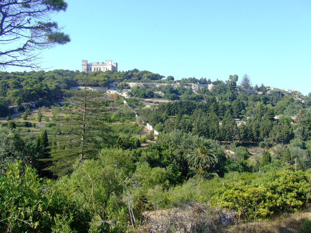 Il-Buskett woodland