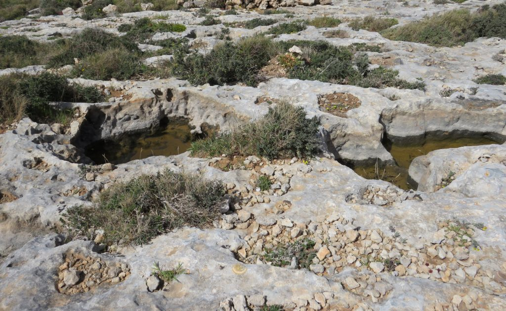 Temporary freshwater rockpools