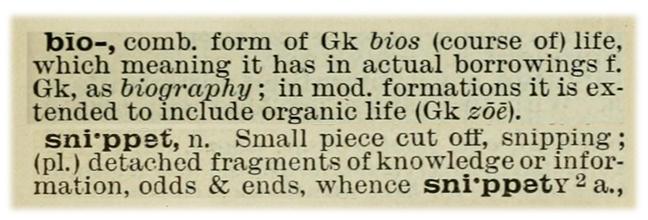 BioSnippet definition