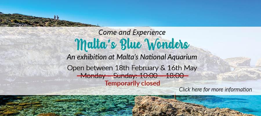 malta_blue_wonders_banner_4