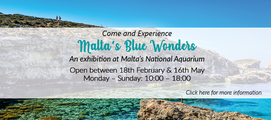malta_blue_wonders_banner